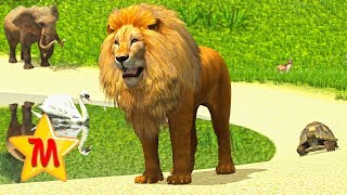 Learn About Animals Their Sounds and Fun Facts Best Learning Cartoon Animation Education For Kids