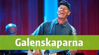 Download Galenskaparna - I min Opel Kapitän - BingoLotto 18/9 2016 MP3 song and Music Video
