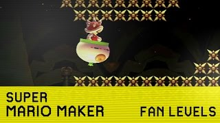 Let's Review Mario Maker Fan Levels. What Could Possibly Go Wrong?