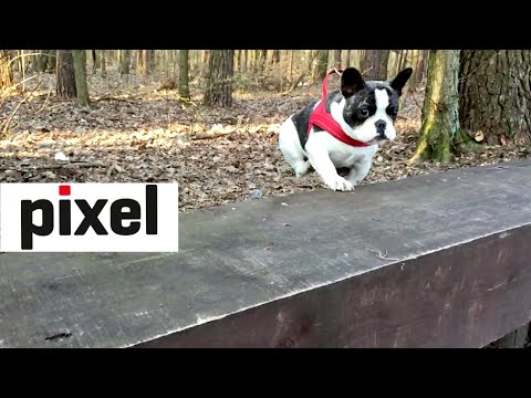Pixel In Epic Slow Motion #2