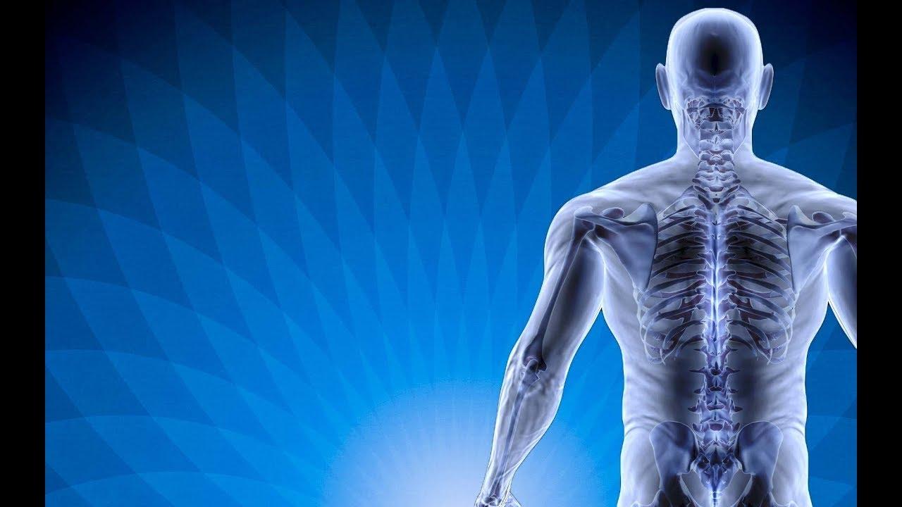 Image result for que son los numeros grabovoi regeneracion columna vertebral