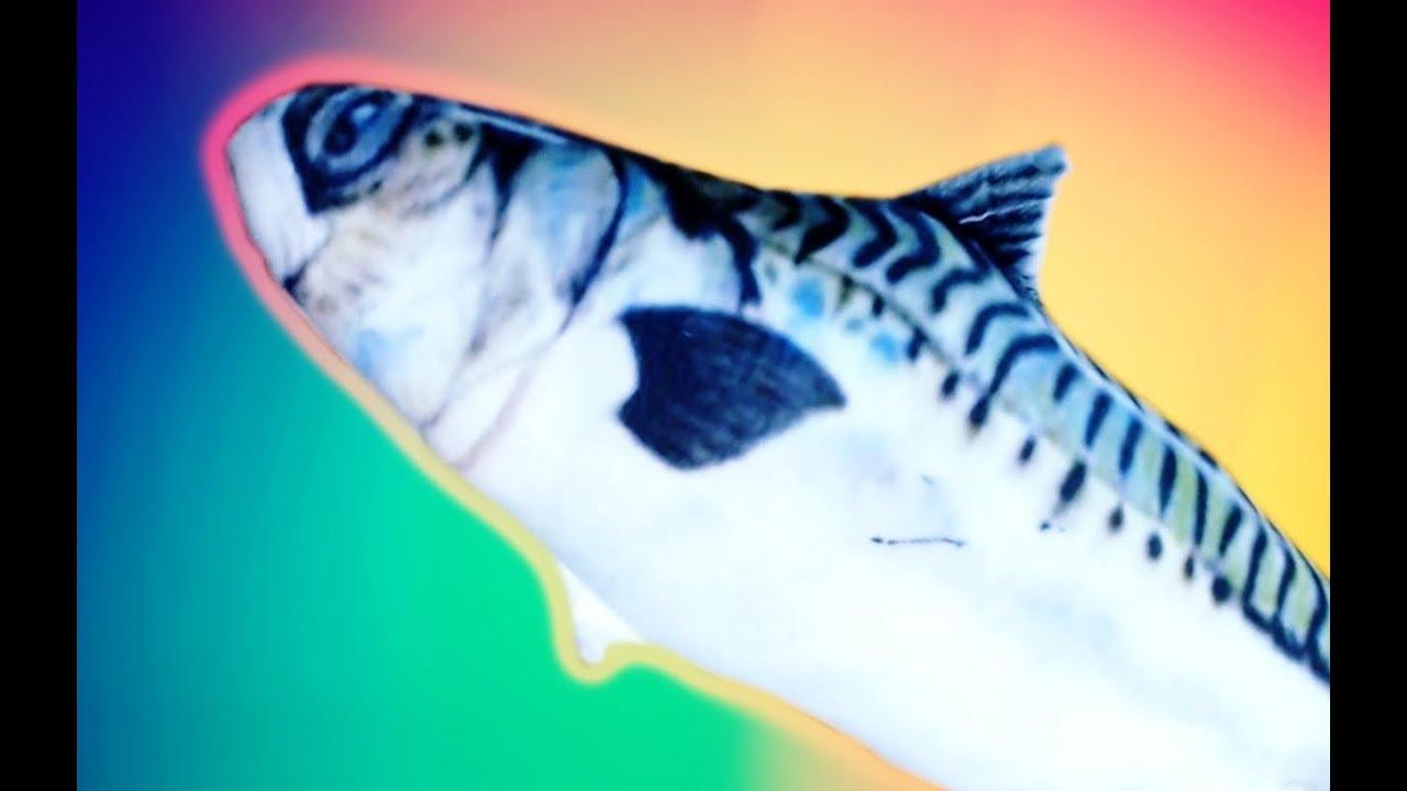 Mr Fish Fish Ismerkedni Szeretne Youtube