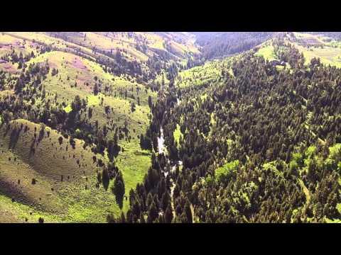 Rock Creek Acreage - Paradise Valley, Montana