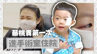 【蔡桃貴成長日記#78】第一次進手術室住院,畫面令人不捨!