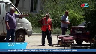 Распутица не страшна: в Волгограде жителям 6 домов строят новый двор