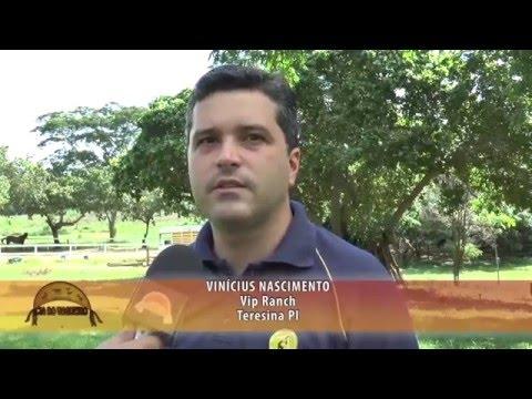 Especial Piauí 2016.