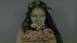 ASMR | 🎧 Nature & Inner Peace | Re-energise Your Soul 🌿