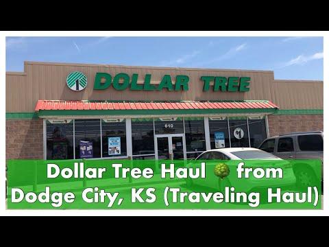 Dollar Tree Haul 🌳 From Dodge City, KS (Traveling Haul)