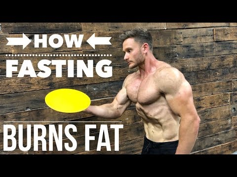 how-fasting-burns-fat:-activate-fat-burning-enzymes--thomas-delauer