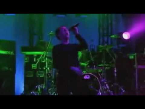 Peter Murphy - Hit Song