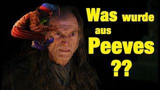 WAS wurde aus PEEVES?! - Harry Potter BUCH vs. FILM 🔥👻