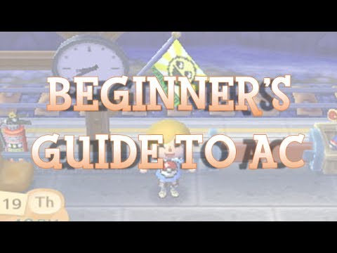 Beginner's Guide to Animal Crossing: New Leaf