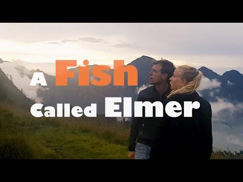 A Fish Called Elmer