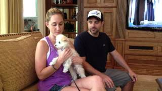 Family Dog Training In Miami: Smart Start Puppies Testimonials