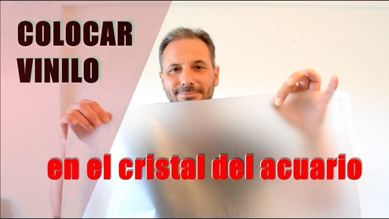 Colocar vinilo en el cristal del acuario youtube - Colocar vinilo en cristal ...