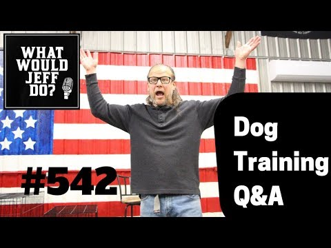 puppy-training-|-stop-dog-growling-|-what-would-jeff-do?-dog-training-q-&-a-#542
