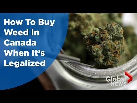 How to buy weed in Canada when it's legalized