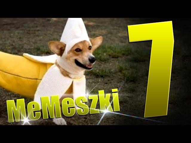 TOP MEMY MIESIĄCA | MeMeszki #7