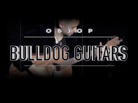 Обзор гитар BULLDOG. ЛУЧШАЯ БЮДЖЕТНАЯ ГИТАРА С ОТЛИЧНЫМ ЗВУКОМ! Alexander Gecko Review