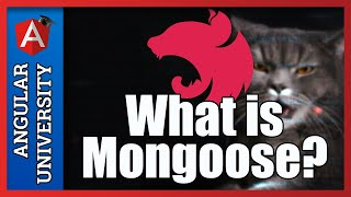 💥 What is Mongoose? Introduction to Schemaless databases