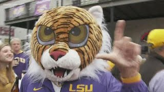 Hundreds of LSU Tiger Band Alumni march through New Orleans
