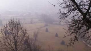 Frozen nature - String Tale