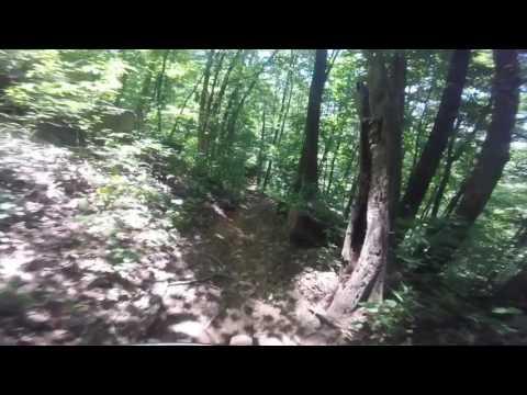 Black Mountain Trail, Avery Creek Trail, Pisgah National Forest Mountain Biking