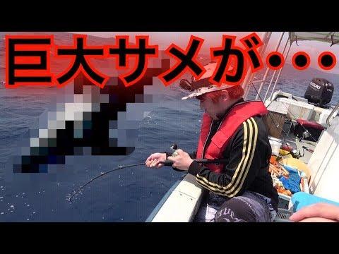 【衝撃】3人で仲良く釣りをしていたら人食いサメが掛かってパニックに!