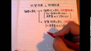 代替効果と所得効果1 定義 (ミクロ1消費者理論) 11