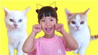 유니 미니의 고양이 돌보기! 놀아주기 ! Helping three little kittens song 인기 동요 놀이 Song Nursery Rhymes for kids songs