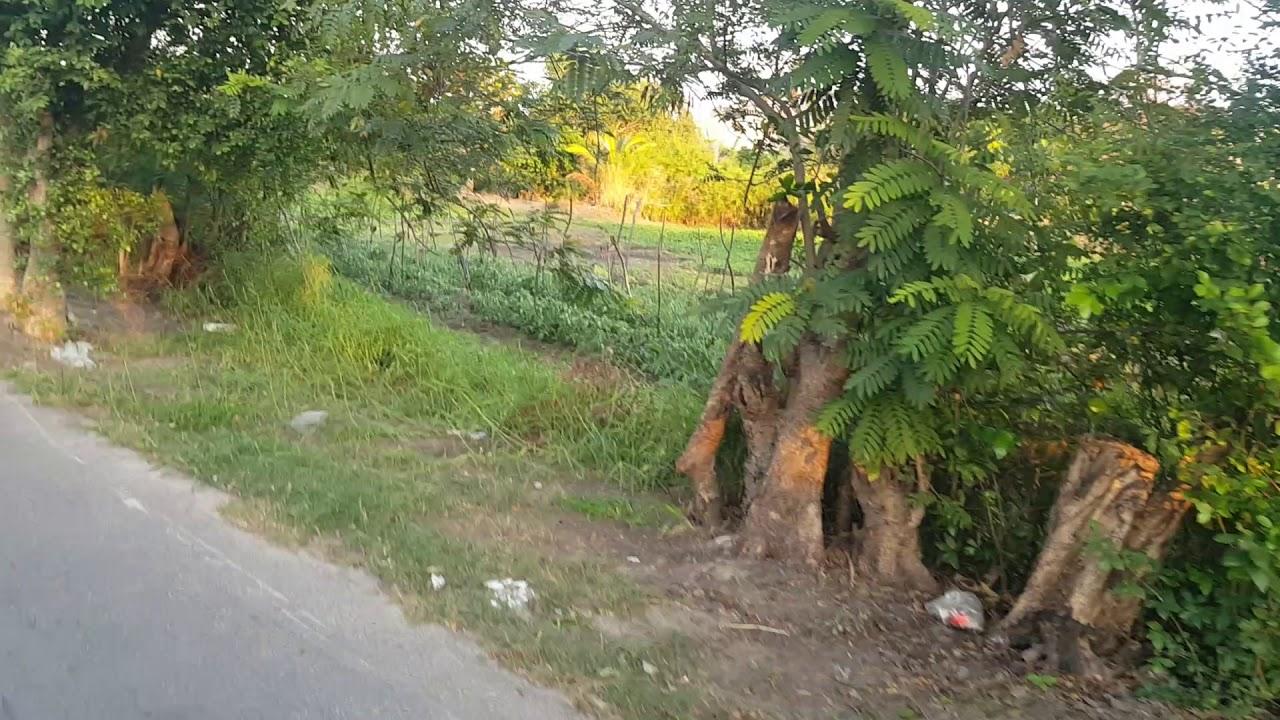 Bán đất mặt tiền Nguyễn Hữu Cảnh tp Vũng Tàu gần biển giá 8tr/m2 dt 10×110