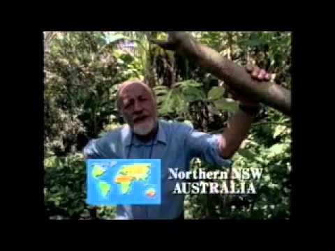 Permaculture One Bill Mollison