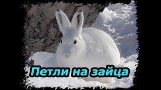 Петли на зайца, охота на зайца. ( Проверка петель № 2 )(Многие зрители просили снять установку на зайца петель. Если будет пользоваться спросом видео, сделаю подр..., 2016-01-13T02:00:00.000Z)