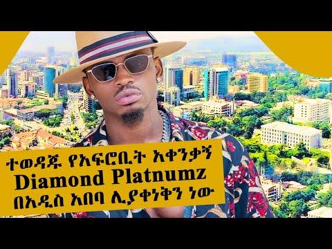 ተወዳጁ የአፍሮቢት አቀንቃኝ Diamond Platnumz በአዲስ አበባ ሊያቀነቅን ነው ll Tadias Addis