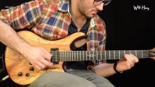 Steely Dan - Bodhisattva solo performance