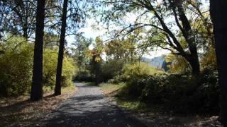 Rogue River Greenway: Fall 2011