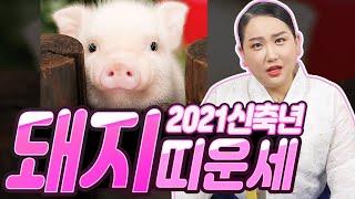 2021신축년 '돼지띠'의 성격과 나이별 신년운세! (95년생 26세, 83년생 38세, 71…
