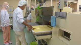 제과제빵기계 나가사키 카스테라 공장 생산과정