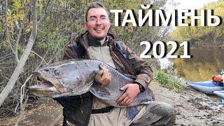 Трофейный ТАЙМЕНЬ на рыбалку в Хабаровский край