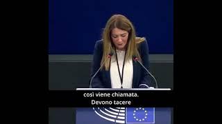 Intervento durante la Plenaria di Strasburgo dell'europarlamentare Pina Picierno sull'Impatto della violenza da parte del partner e dei diritti di affidamento su donne e bambini.