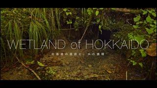WETLAND of HOKKAIDO~北海道の湿原と、水の循環(Full version)