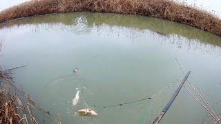 Рыбалка в Дагестане Как Ловят Лесочными Сетями С Берега Не Заходя В Воду