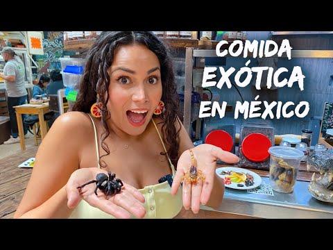 Probando COMIDA EXÓTICA Mercado San Juan CDMX Ciudad de México