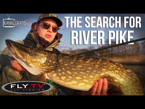 FLY TV - The Search for River Pike