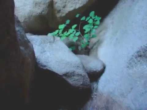 凤凰岭 曲径洞天 Qu Jing Dong Tian Cave