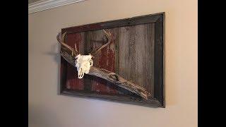 Deer Mount on Reclaimed Barn Boards