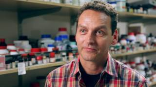 New insights into cell aging and neurodegenerative diseases
