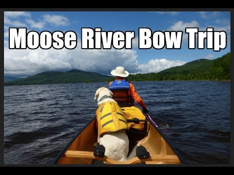Moose River Bow Trip 2017 - A Canoe Trip From Jackman Maine