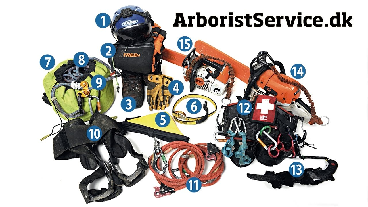 My Minimum Tree Climbing Equipment - Arborist Tree Climbing Gear