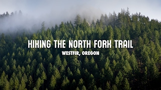 Hiking the North Fork Trail in Westfir, Oregon